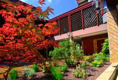 """Le patio des halles planté de végétaux rouges et verts donnant l'effet d'un petit jardin """"japonisant"""""""