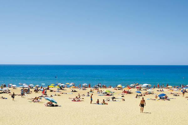 Une plage d'Hossegor l'été